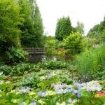 De Oevertuin Friesland foto 2